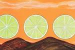 fein_rolling limes